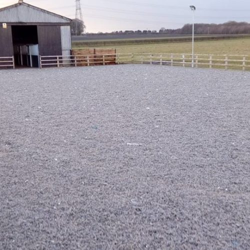 Horse Arena Surface